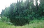 Дача-кемпинг в живописном месте на берегу реки