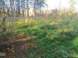 Продам земельный участок в Томском районе(c.Курлек)